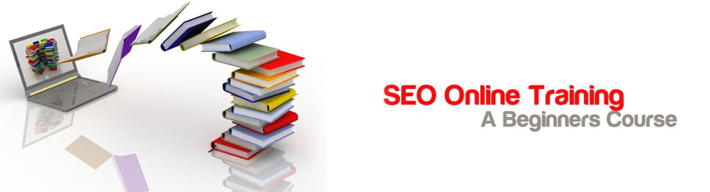 Live Seo Training